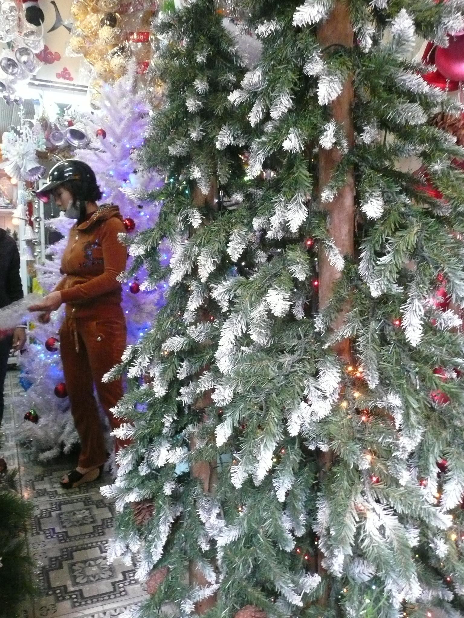 Thị trường Noel 2015