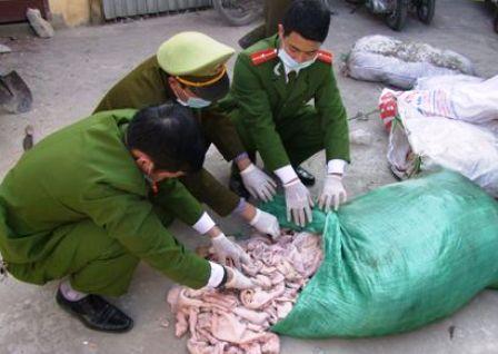 Công An Thanh Hóa bắt giữ ô tô trở 550kg bì lợn bị ôi thiu biến màu trên đường tiêu thụ