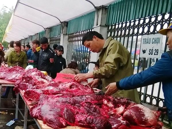 Lễ hội chọi trâu Phúc Thọ: Bắt nhiều người bán thịt trâu chọi rởm