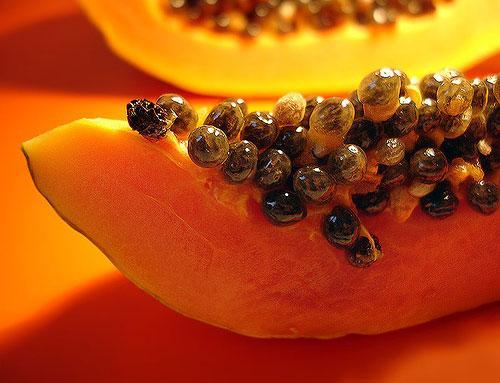 Hạt đủ đủ là một trong những thực phẩm phòng chữa bệnh gai cột sống hiệu quả