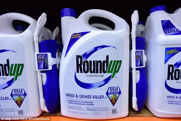 Thuốc diệt cỏ glyphosate được sử dụng phổ biến trên Thế giới