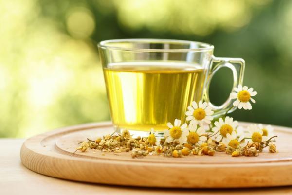 trà hoa cúc là thuốc nhuộm tóc thảo dược làm sáng màu tóc