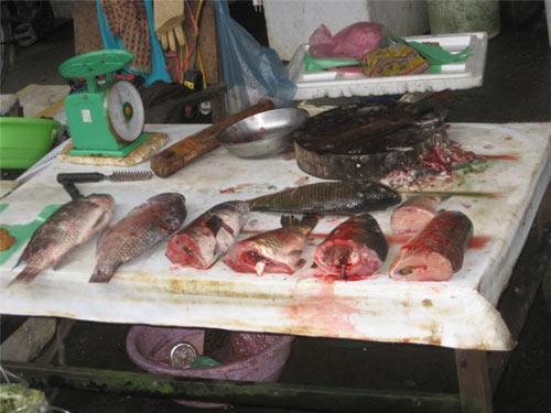 Ngộ độc thực phẩm vì đồ ăn ôi thiu
