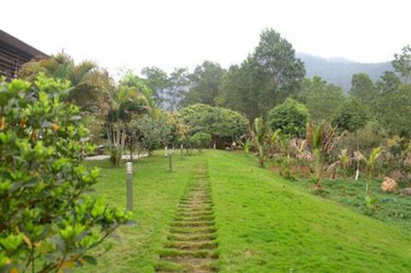 Vợ chồng ca sĩ Mỹ Linh và nhạc sĩ Anh Quân mất khá nhiều công sức để xây dựng khu nhà vườn vừa đảm bảo sự tiện nghi, sang trọng hiện đại lại vừa ôn hòa, gần gũi với thiên nhiên.