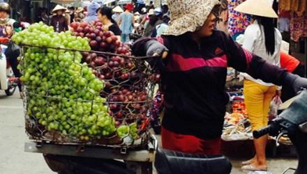 Nho đỏ Trung Quốc trước đây gắn mác nho Mỹ thì nay là Ninh Thuận
