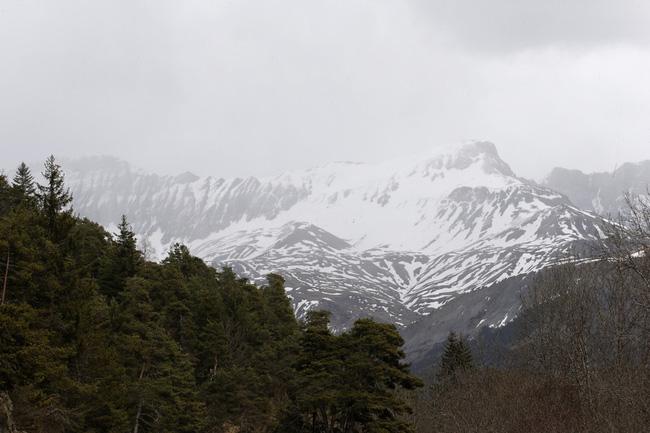 Dãy núi Alps