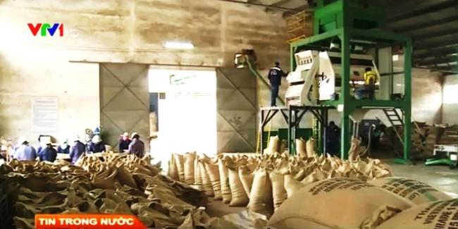 Theo tin tức mới cập nhật trong nước, giá xuất khẩu nông sản Việt Nam chỉ bằng 65% so với giá bình quân thế giới