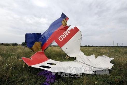 Mảnh vỡ máy bay MH17 ở Shaktarsk, vùng Donetsk, miền Đông Ukraine ngày 18/7/2014