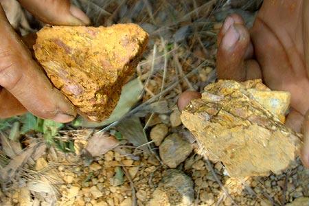 Trong những tin tức pháp luật mới nhất hôm nay có vụ tịch thu hơn 1,5 tấn quặng vàng ở Quảng Nam