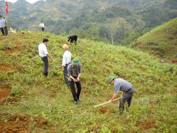 Trong những tin tức pháp luật mới nhất hôm nay có vụ bịa dự án trồng rừng tỷ đô để lừa đảo