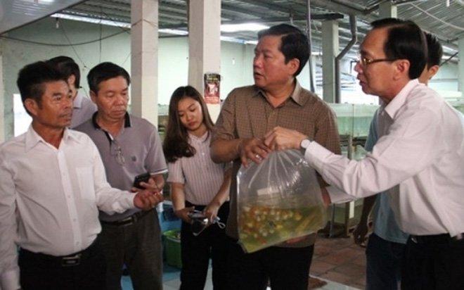 Tin tức thời sự 24h ngày 23/5 đề cập đến vụ Bí thư Đinh La Thăng đi thăm cơ sở sản xuất cả kiểng xuất khẩu