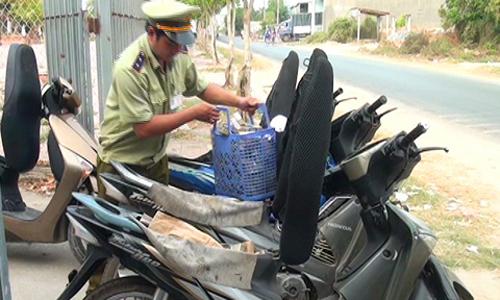 Tin tức trong ngày 30/3: Xoài keo Campuchia 'gây sốt' thị trường