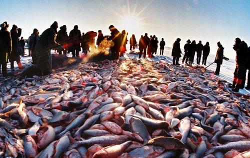 """tình hình Biển Đông được cho vào """"tầm ngắm"""" của Trung Quốc vì nguồn lợi thủy hải sản"""
