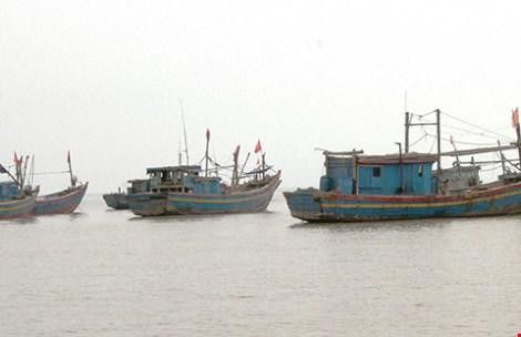 Số lượng tàu cá Trung Quốc vi phạm chủ quyền Biển Đông Việt Nam trong năm 2015 có chiều hướng gia tăng
