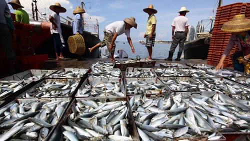 Trung Quốc trả tiền, hỗ trợ phương tiện khuyến khích ngư dân đánh bắt xa bờ trên biển Đông
