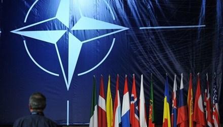 Tình hình Ukraine mới nhất cho biết NATO – Ukraine ấn định thời điểm tập trận chung