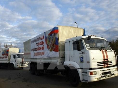 Xe chở hàng viện trợ của Nga đến Ukraine