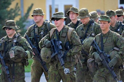 Tình hình Ukraine mới nhất cho biết quân đội Ukraine tập trận chung với NATO
