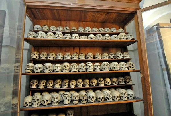 Bảo tàng kinh dị với hơn 400 hộp sọ người được trưng bày