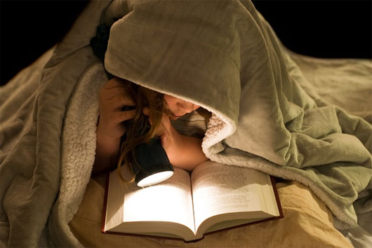 Các cú đêm được cho là sở hữu trí thông minh vượt trội hơn những người sinh hoạt điều độ