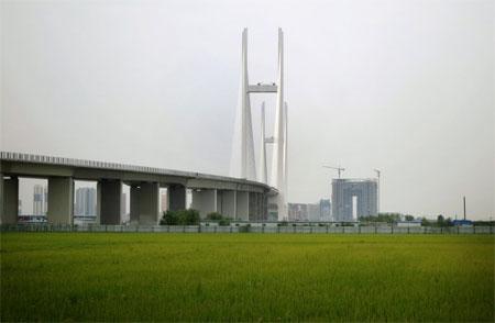 tin tức thời sự mới nhất hôm nay ngày 19/11: Trung Quốc bực tức vì Triều Tiên bỏ không cây cầu nối 2 nước