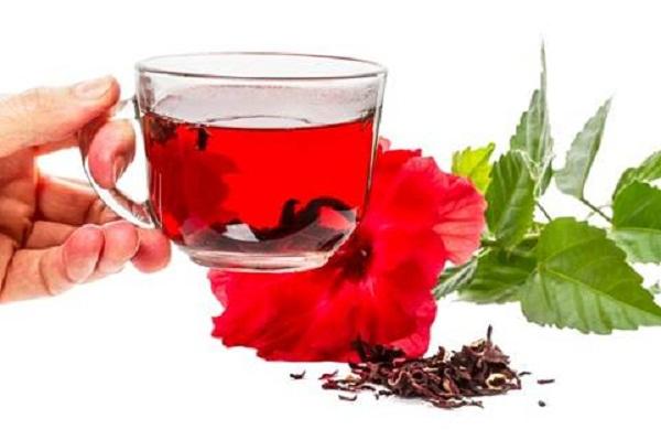 Trà hoa dâm bụt là loại đồ uống được bác sĩ trong sức khỏe gia đình khuyên dùng