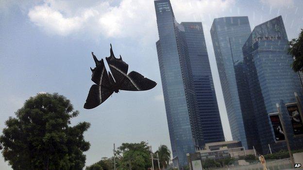 bướm đêm khổng lồ ở malaysia