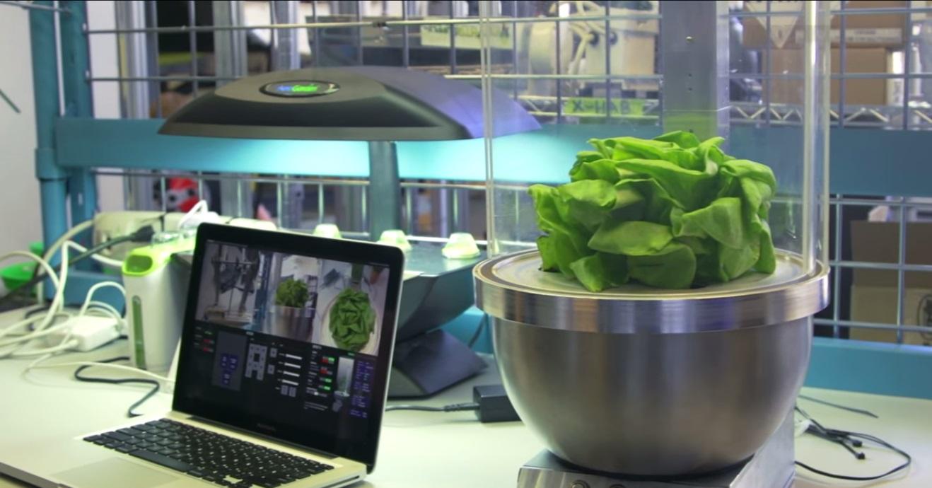 Ngoại hình của chiếc máy trồng rau trong vũ trụ SPOT and ROGR