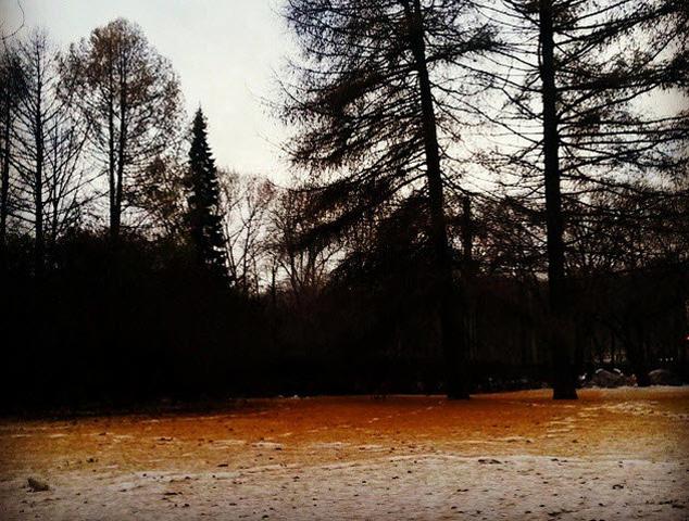 Tuyết màu cam, hiện tượng lạ khiến người dân vừa thích thú vừa lo sợ