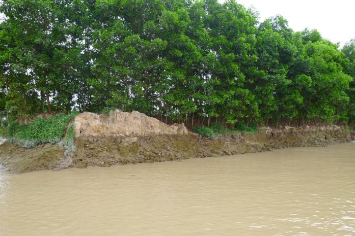 khai thác cát trên sông cầm đông triều