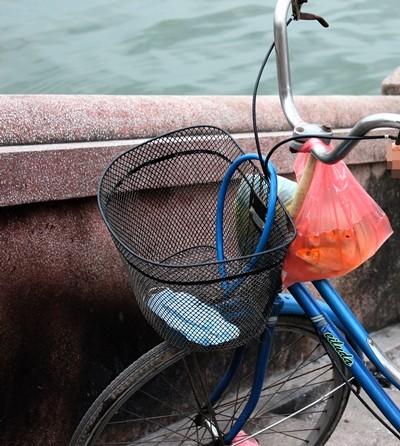 Những chú cá vàng được người dân mang đi thả để ông Công ông Táo có phương tiện lên chầu trời
