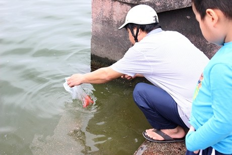 """Anh cho rằng thả cá là một việc làm mang ý nghĩa nhân văn, giúp phóng sinh, giải thoát cho cá khỏi cảnh """"cá chậu, chim lồng"""" về với môi trường tự nhiên. Cho con trai đi cùng cũng là cách giáo dục để cậu bé trở thành người tốt, có ích cho xã hội"""