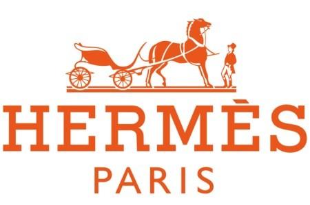 Sự xa xỉ, tinh tế, sang trọng chính là cách mà Hermes thu hút chị em.
