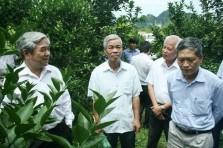 Bộ trưởng Nguyễn Quân làm việc với tỉnh Hòa Bình.
