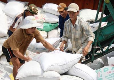 Chất lượng là tiêu chuẩn hàng đầu của các doanh nghiệp xuất khẩu gạo Việt Nam. Ảnh: Minh Trường
