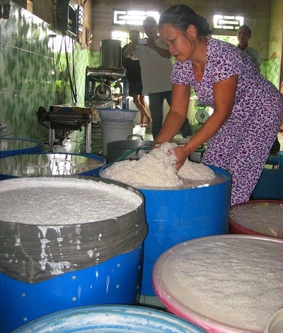 Mỗi ngày làng bún Vân Cù sản xuất từ 10 đến 15 tấn bún