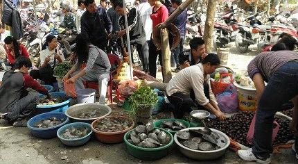 Thông tin thủy sản ở Hà Nội nhiễm kim loại nặng đã khiến cho NTD lo lắng