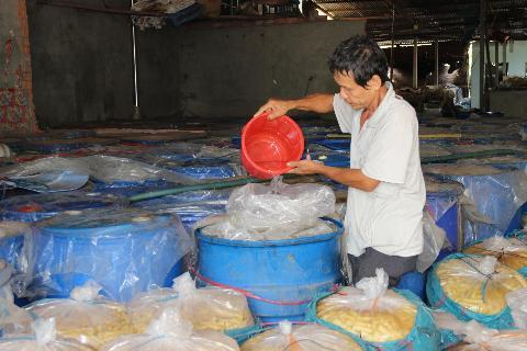 Ông Lâm chăm sóc trở lại lô măng muối 70 tấn có chất acid oxalic sau khi được phòng PC49 Tây Ninh tháo gỡ niêm phong ngày 6/12/2013