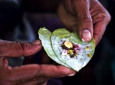 Thực hư việc ăn trầu mắc bệnh ung thư?