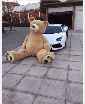 Giới trẻ 'phát sốt' vì ... gấu bông khủng