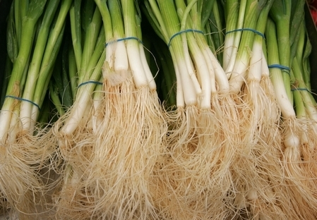 Bốn loại rễ cây trị bách bệnh trong bếp nhà bạn