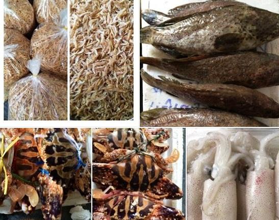 Người tiêu dùng nên lựa chọn những nơi bán uy tín để có được hải sản tươi sống, tranh hàng đông lạnh