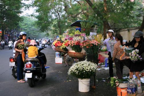 Giá hoa tươi cho ngày 20/11 không có đột biến