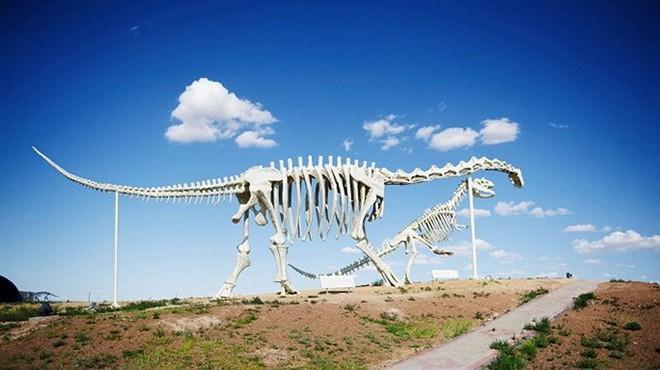 Khủng long cổ dài, một trong những loài có kích thước lớn nhất.
