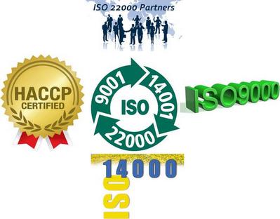 Học ISO để làm gì?