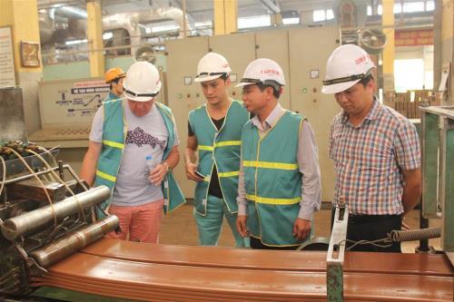 Chuyên gia từ Vương quốc Anh thăm quan quy trình sản xuất tại Viglacera