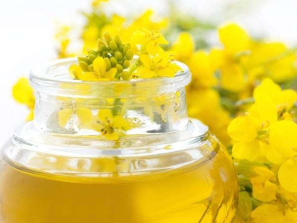 Vitamin E trong dầu hạt cải gây viêm phổi