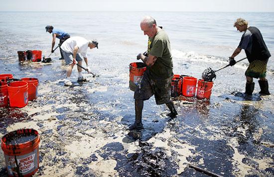 Vụ tràn dầu sẽ gây ảnh hưởng nghiêm trọng đến hệ sinh thái biển khu vực này