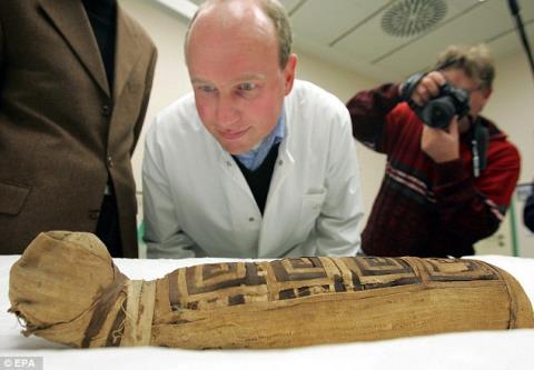 1/3 số xác ướp động vật trong hầm mộ Ai Cập cổ đại trống rỗng