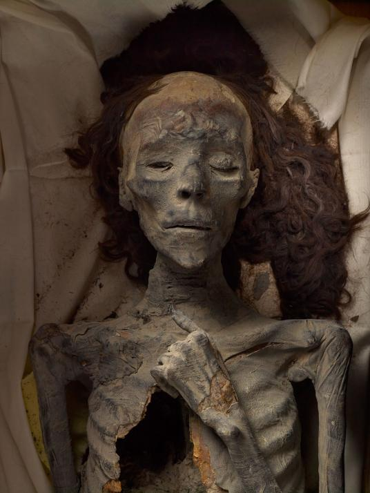 Bà của Pharaoh Tut: Kết quả xét nghiệm DNA đã xác định được xác ướp này thuộc về Tiye, người vợ xinh đẹp của Amenhotep III và là bà của Tutankhamun. Bà được chôn cất trong tư thế tay trái đặt lên ngực – tư thế chôn cất của nữ hoàng. Đặc biệt, bộ tóc của xác ướp vẫn còn nguyên vẹn nhờ khí hậu khô nóng của Ai Cập. Ảnh Kenneth Garrett/ National Geographic